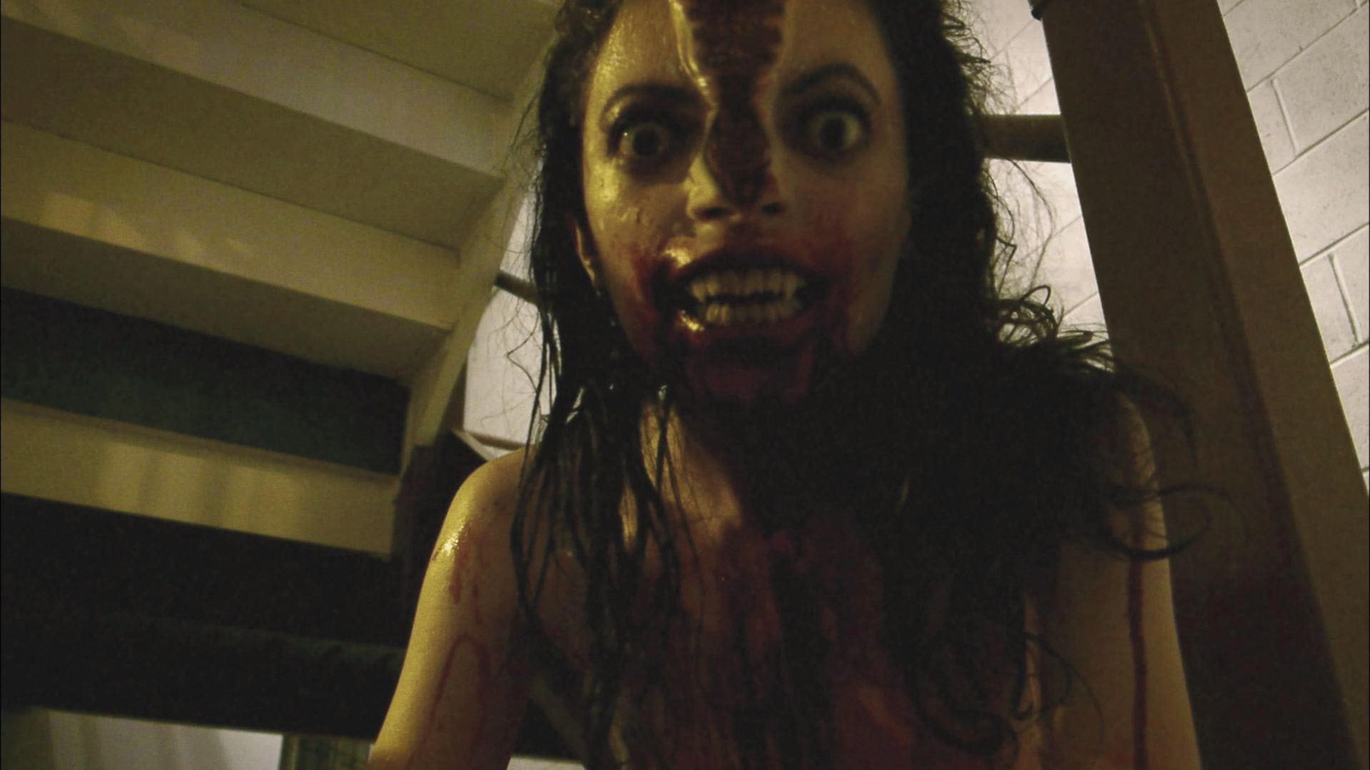 Feature Film : V/H/S (2012) | Moonshine Pictures, Inc